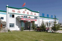 Glasgow Dandong Pharmaceutical Co., Ltd., Qinghai