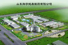 Salute Pharmaceutical Co., Ltd. Shandong Xiangyu